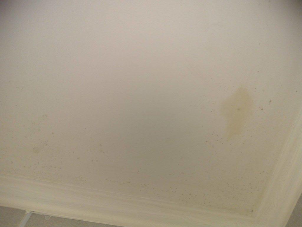Як прибрати грибок у ванній кімнаті