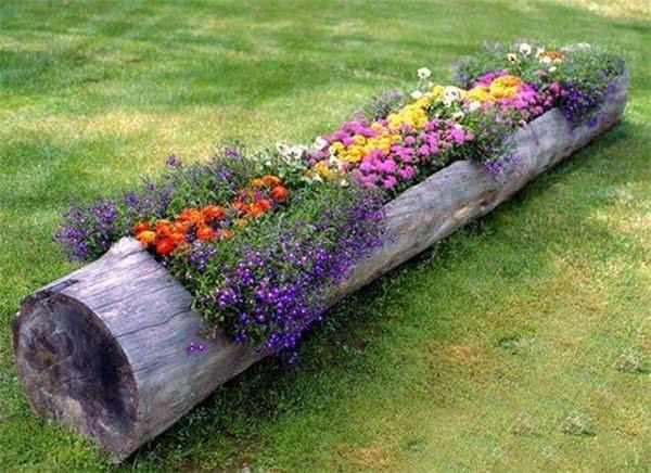 Необычные клумбы для цветов