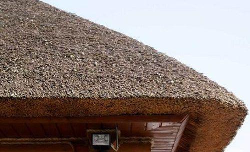 Соломенная крыша удобно необычно и дешево