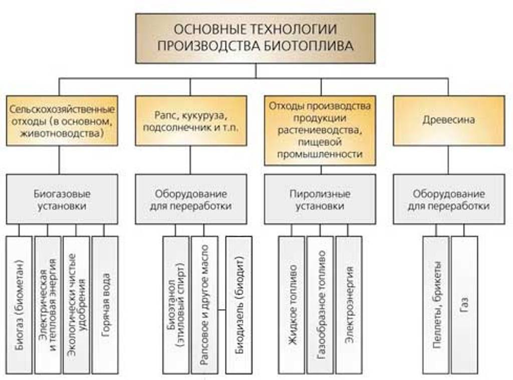 Виды и применение биотоплива