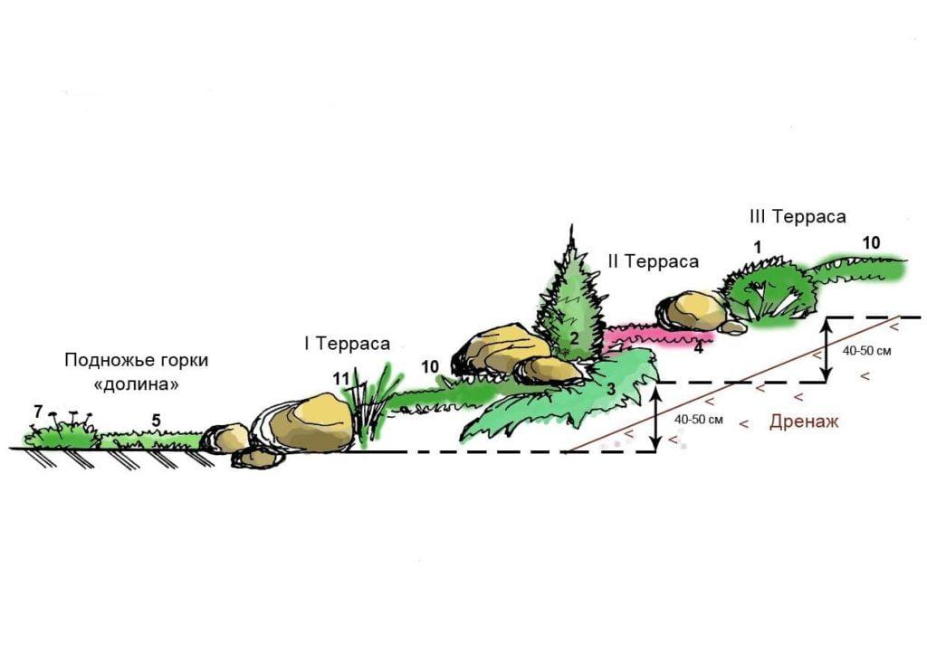 Альпийская горка альпинарий схема