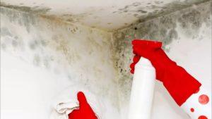 Уксус против плесени на стенах и потолке